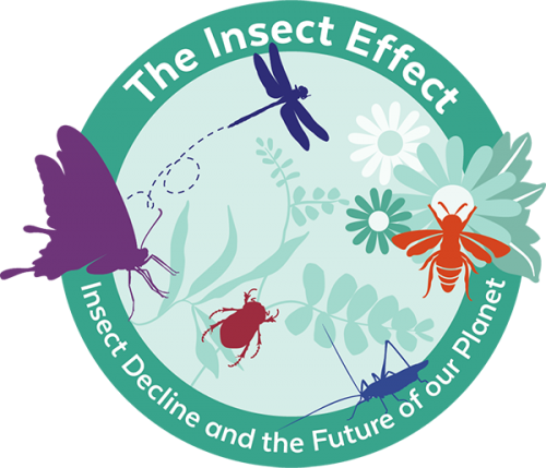 logo for Insect Effect campaign