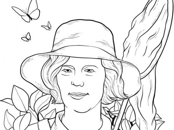 line drawing of a researcher with butterflies