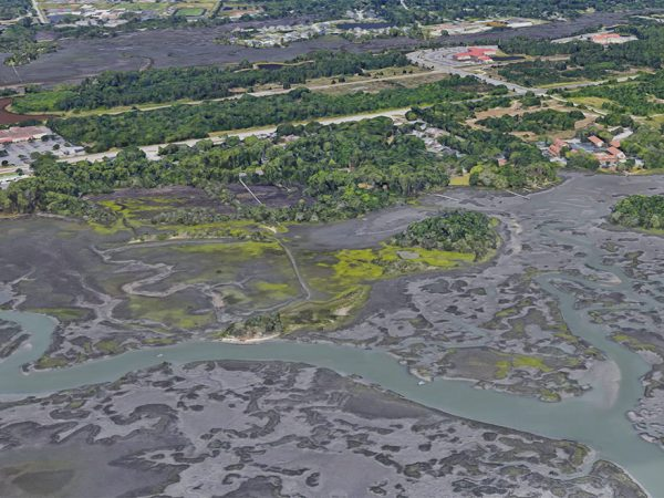 aerial view of an inshore waterway habitat blending into developed land