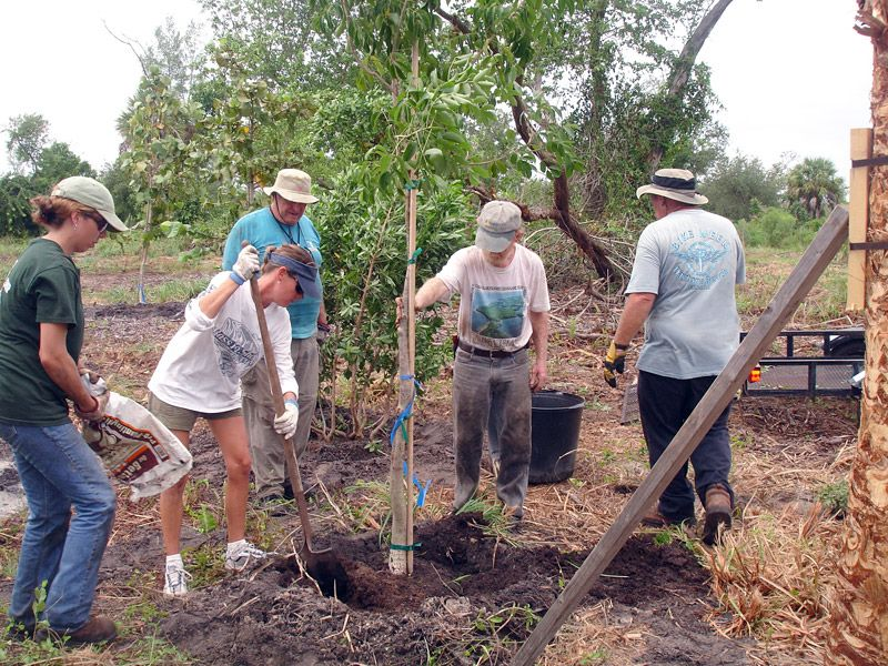 Volunteers help plant trees, 2007