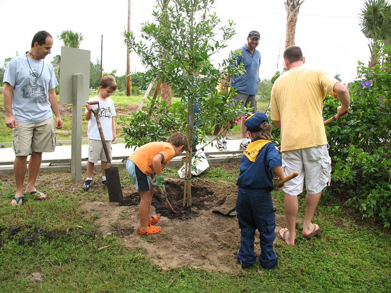 Scouts help plant trees at Randell Center