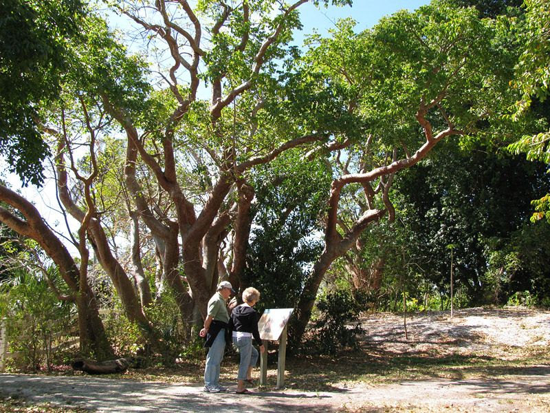 Visiting the Calusa Heritage Trail