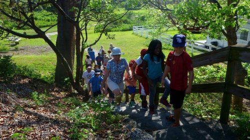 kids-climb-mound