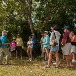 tour group in the shade