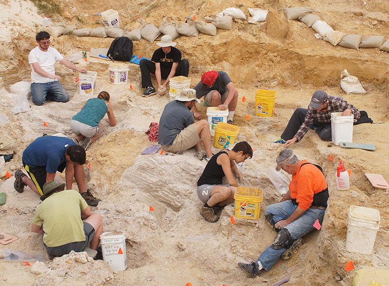 group excavating