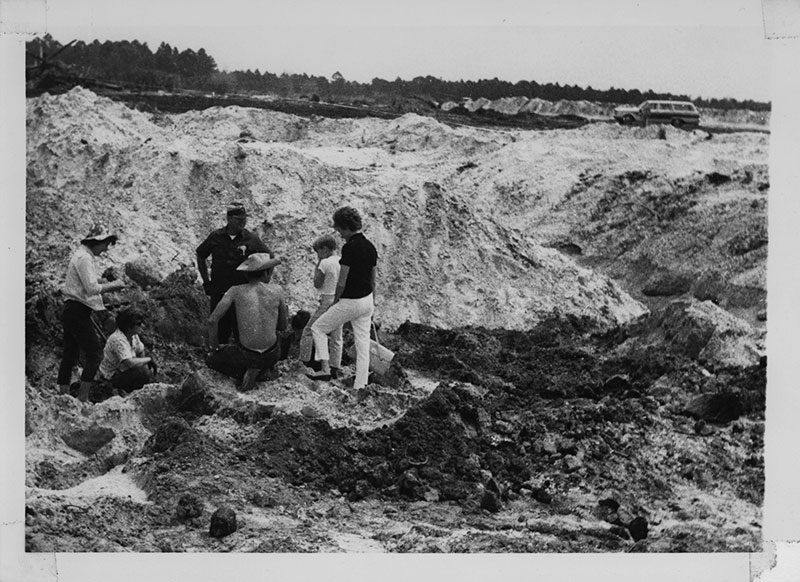 Figure 5. Overview of the West Palm Beach fossil dig, 1969.
