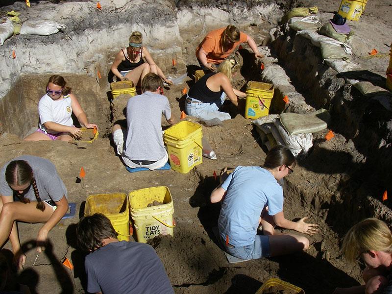 Students excavating