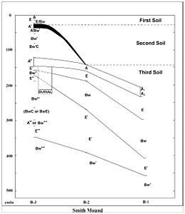 Figure 5-3. Profile of Smith Mound showing stacked soils and soil morphology from each of the three units, B-1, B-2, B-3; cmbs is centimeters below surface. Diagram by Sue Ellen Hunter, courtesy University of Florida, Institute of Archaeology and Paleoenvironmental Studies.