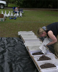 Donna Ruhl processing samples from St. Catherines Island's Shell Ring