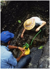 Excavation at Old Mound's waterlogged deposits with W. Marquardt and E. LeCompte, 1992.