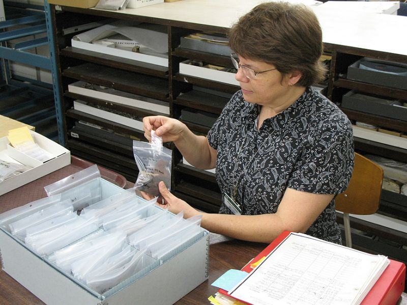 Ann Cordell re-bags analyzed pottery during the NEH-sponsored rehabilitation project.