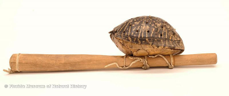 "Rattle, Seminole, box turtle shell (Terrapene carolina), wood, leather, 20th century, 13.3"" long (E-882)."