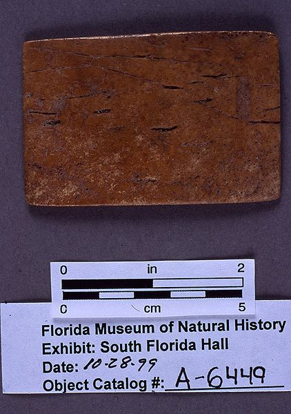 Rectangular object, unknown function, turtle shell, A.D. 700-1500, Key Marco, Collier Co. (A-6449)