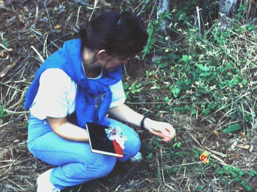 Lee Newsom collects specimens of plants at Pineland, 1991.