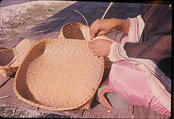 Figure 2: Photograph of Seminole basket maker, 1960. Donated by George L. Crutcher (79-8-024).