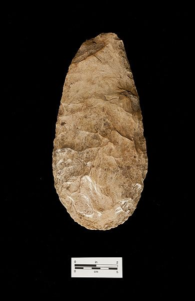Chert hoe or spade, ca. A.D. 1000-1500, Pineland, Lee Co. (2008-26-2).