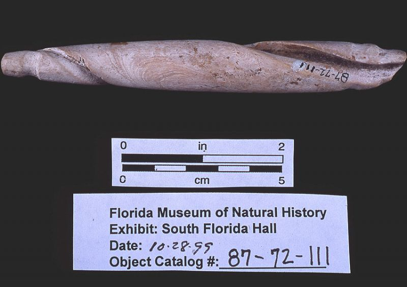Double-grooved shell columella sinker, Galt Island, Lee Co. (87-72-111)