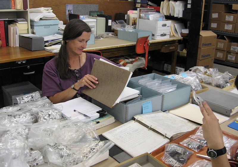 Karen Walker begins the process of curating specimens taken for radiocarbon dating, comparing records with samples.