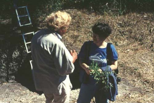 Long-time volunteer Shirley House discusses plants with archaeobotanist Margaret Scarry, Pineland, 1990.