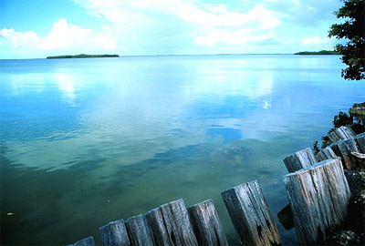 Florida Bay. Photo courtesy U.S. Geological Survey