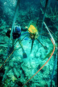 Research biologists. Photo courtesy OAR/National Undersea Research Program