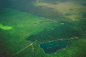 Aerial view of Everglades National Park. Photo courtesy South Florida Water Management District