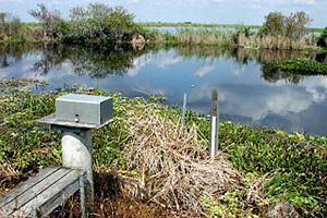 Water data collection station. Photo © Cathleen Bester/Florida Museum