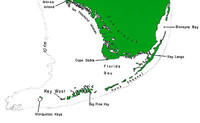 Map of South Florida including Florida Keys, Florida Bay, and the Everglades. Image courtesy U.S. Fish and Wildlife Service