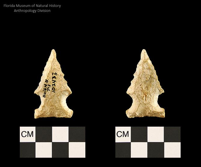 Bolen Beveled Subtype 1 | Early Dalton (Bullen)/Late Paleoindian (Milanich)