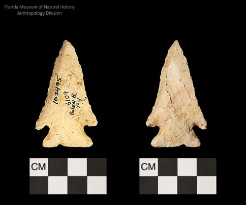 Bolen Beveled Subtype 4   Early Dalton (Bullen)/Late Paleoindian (Milanich)