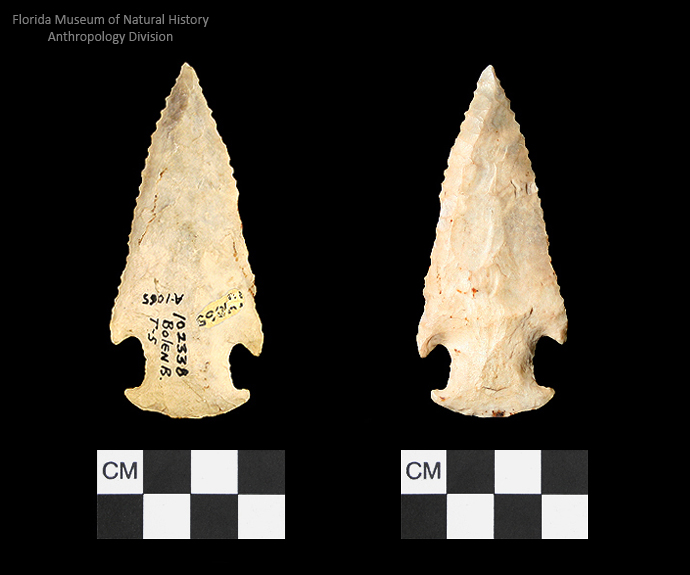 Bolen Beveled Subtype 5 | Early Dalton (Bullen)/Late Paleoindian (Milanich)