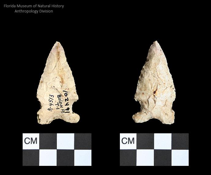 Bolen Plain Subtype 1 | Early Dalton (Bullen)/Late Paleoindian (Milanich)