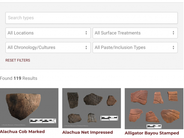 Screen shot of search fields