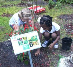 two young girls dig in the dirt to plant flowers