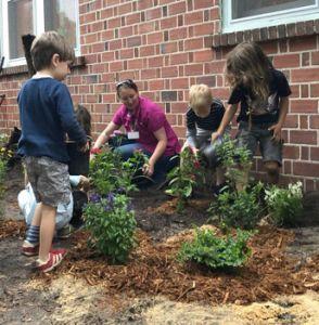 Children spread mulch around plants in a garden