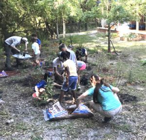 Adults and students plant a garden