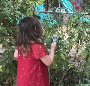 young girl looks at leaves