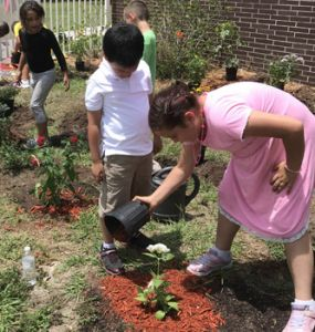 Girl pours red mulch around a plant while another kid watches.