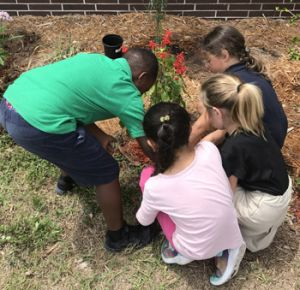 Four kids planting a red flowering plant
