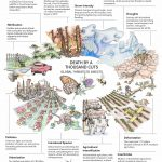 Tom Emmel Seminar Series Presents Expanding Horizons in Lepidoptera Research