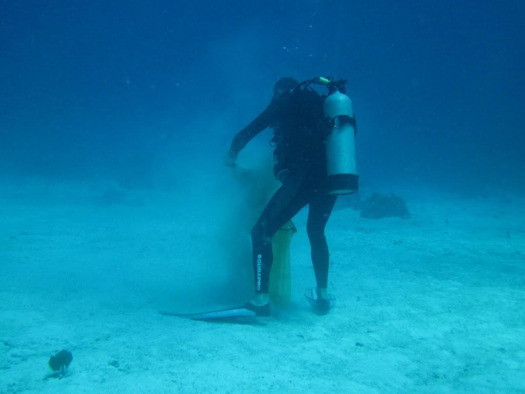 scientist sand sifting underwater