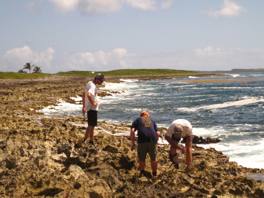 scientists collecting samples