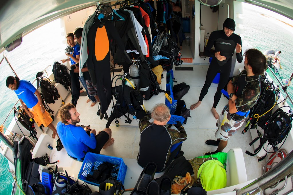 Gearing up: cruise scientists prepare for another rigorous day on the water. Photo courtesy Tane Sinclair-Taylor.