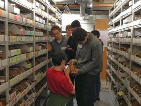 students exploring the collection