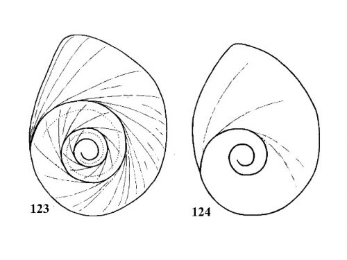 Fig. 123 & 124