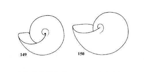 Figs. 149 & 150