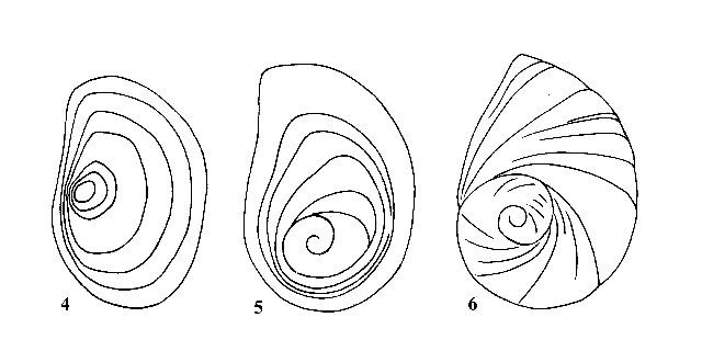 Figs. 4, 5 & 6