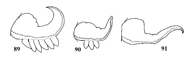 Figs. 89, 90 & 91