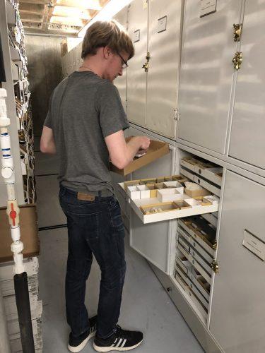 Josh shelving dry specimens