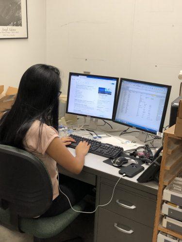 Erika entering data into a spreadsheet